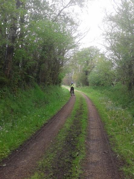 La piste cyclable remplace l'ancienne voie de chemin de fer