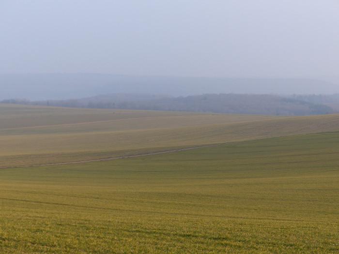 Lumière dorée pour collines en champ majeur