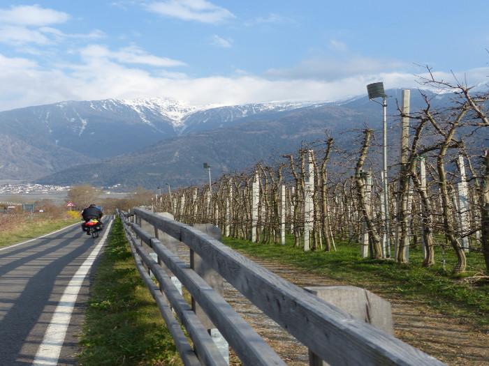 Süd tyrol, le pays des pommes