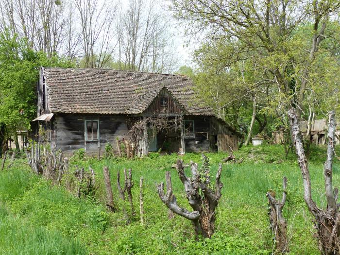 Petite maison locale
